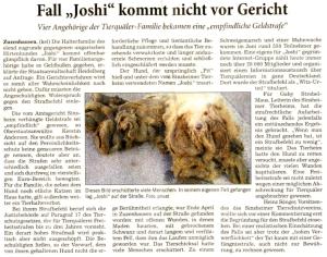 JoshiAbschlussbericht