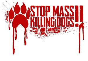 stopkillingdogs